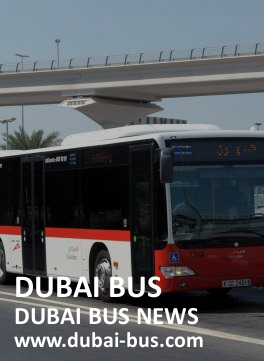 dubai-bus News